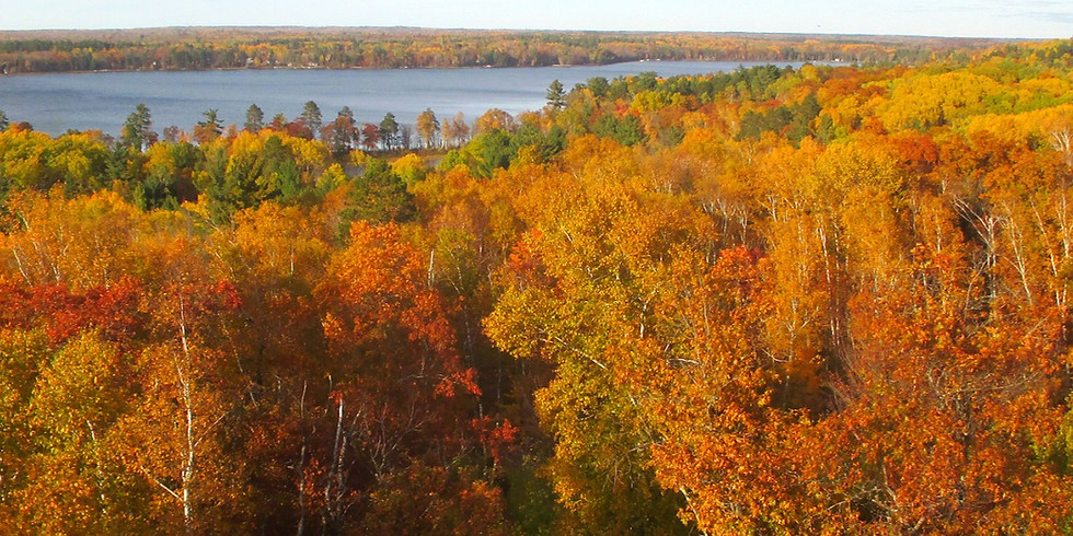 Fall Colors Tower Hike