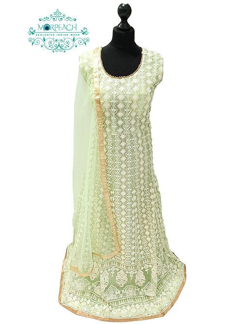 Light Green Lucknowi Sequence Dress (4XL)