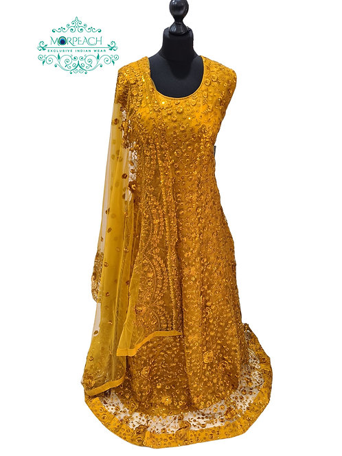 Mustard Embroidered Sequence Dress (4XL)