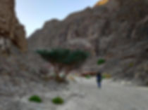 eilat mountains hike.jpg