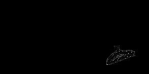 style whim logo