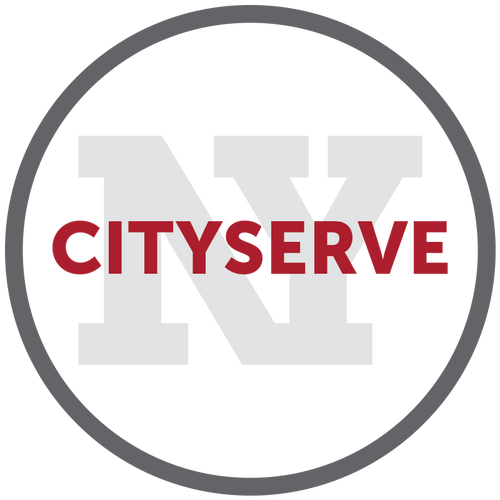 ny-serve.png