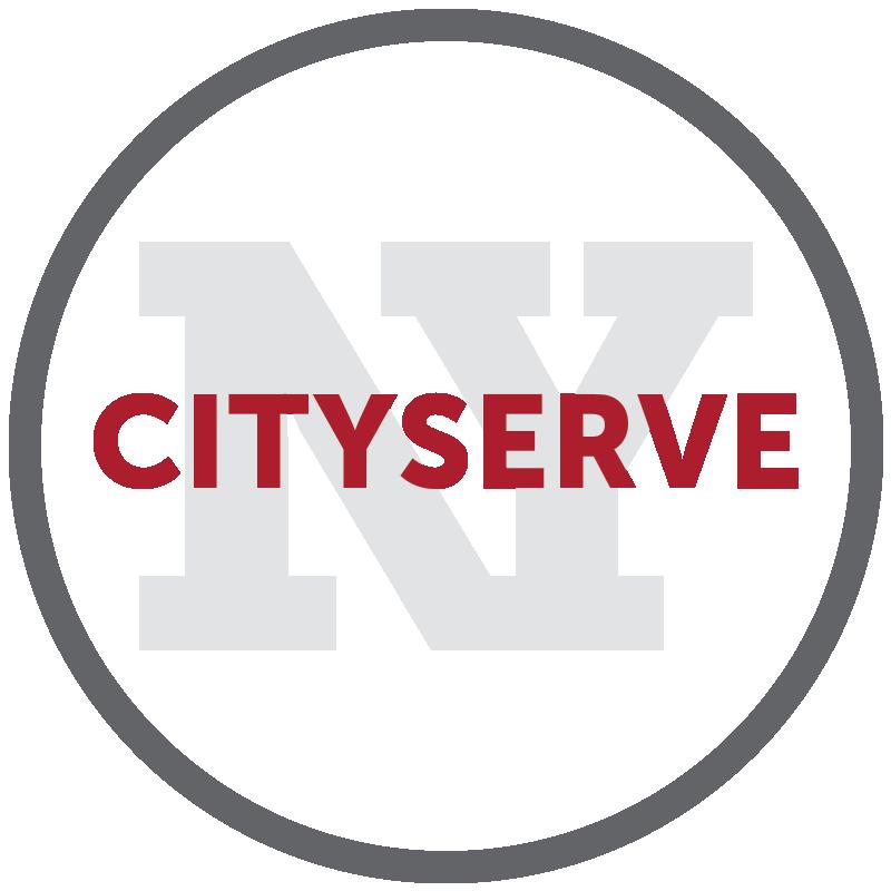 ny-serve.png