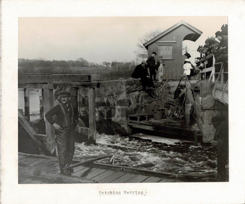 This photo of the herring weir also shows the trolley stop on the bridge.