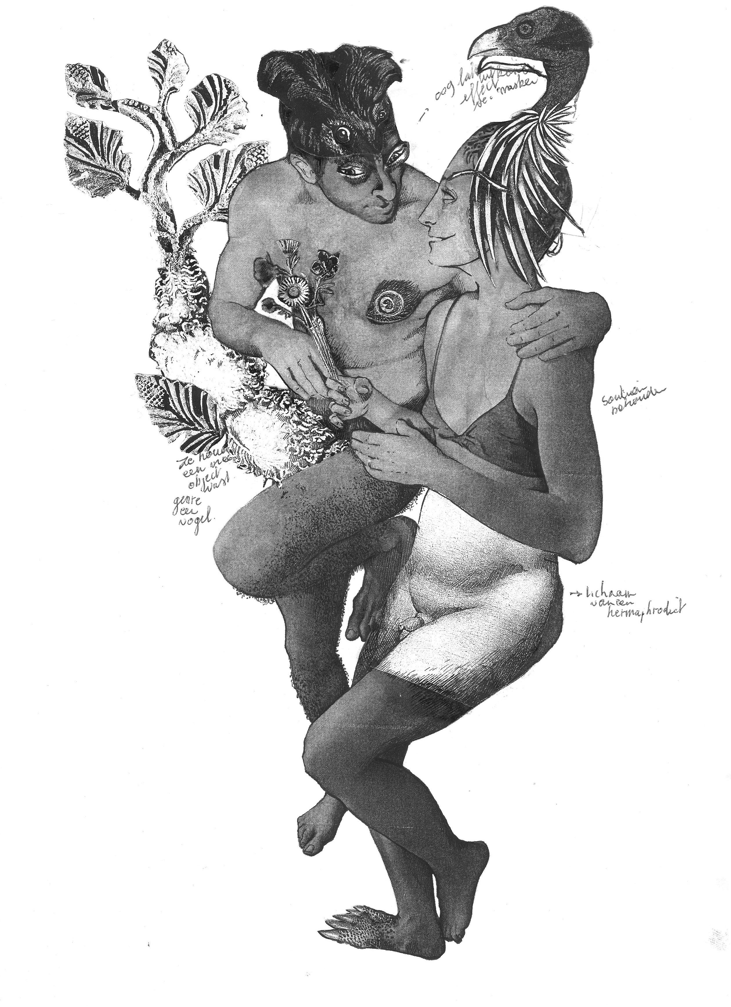 Pan & Hermaphrodites I