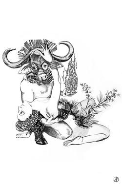 Pan & Hermaphrodites IV