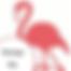 flamingosymbool2.png