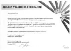 Диплом от Билайн_Коротеев