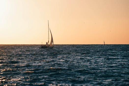 Sail boats .jpg
