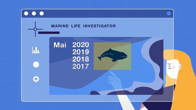 MARLIN . Marine Life Investigator