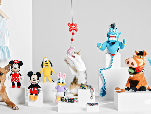 Chewy Releases Exclusive Collection of Disney Pet Products with Star Wars and Marvel Toys Too
