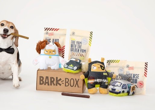 BarkBox Parent Revenues Grow 78% in Q3