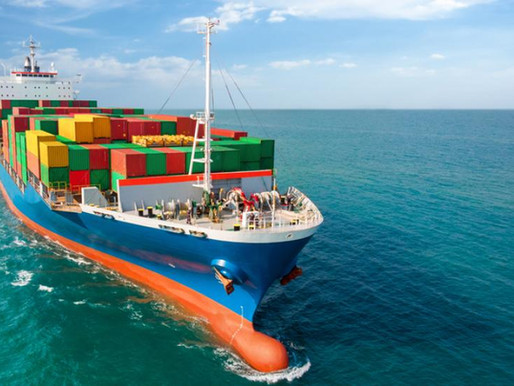 Supply Chain Disruption in Peak Holiday Season