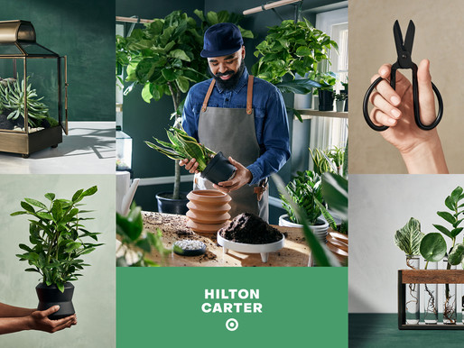 Target's Bringing the Outdoors in with this Lush New Partnership