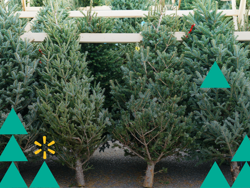 Walmart Announces Live Christmas Tree Delivery and Light Service