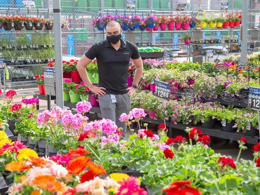 Sourcing to Protect Pollinators, Merchants Move Toward a Greener Future