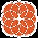 alt4-orange-icon.png