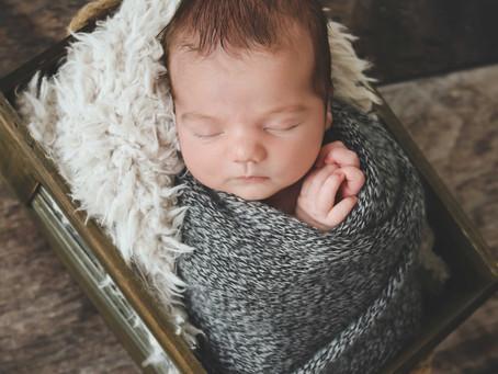 Newborn: Colt {7 days}