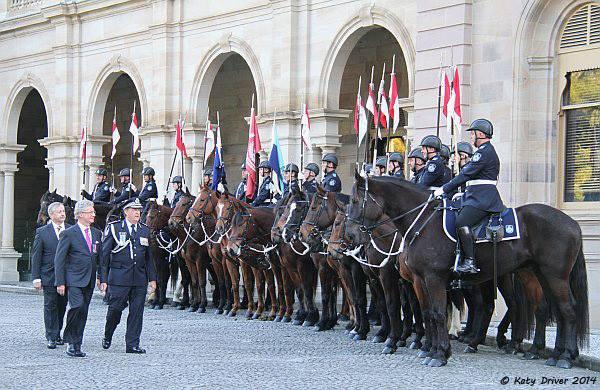 Police Horses.jpg