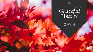 Grateful Hearts Day 4 prompt: Night