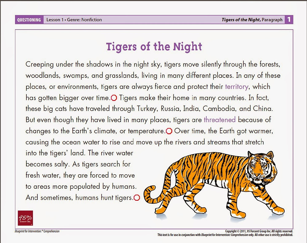 Tigers of the Night.jpg