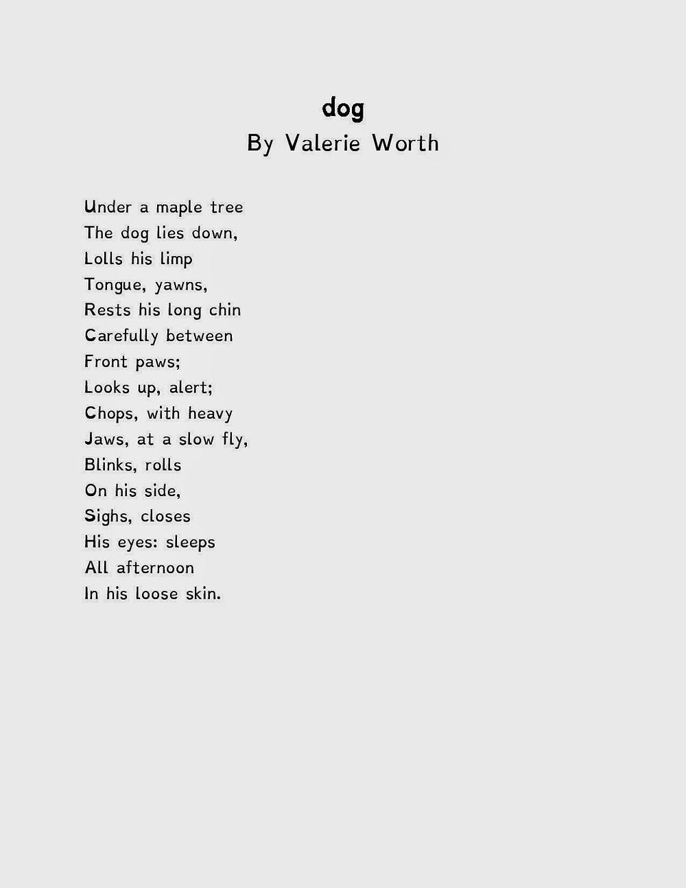 dog-page-001.jpg