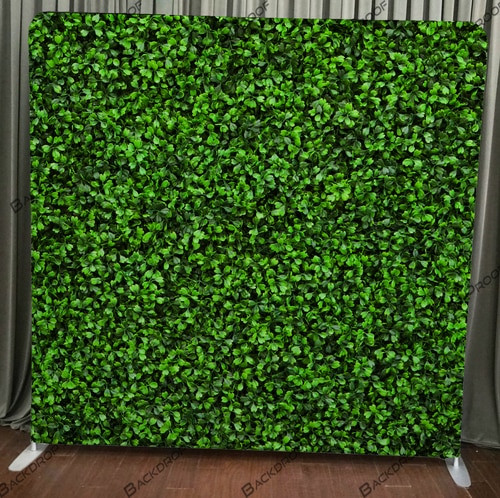 Hedge Wall.jpg