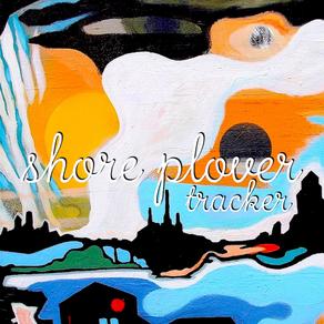 Shore Plover