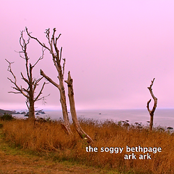 the soggy bethpage LP2 ark ark