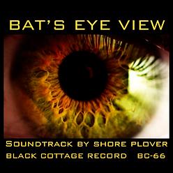 Shore Plover Bat's Eye View