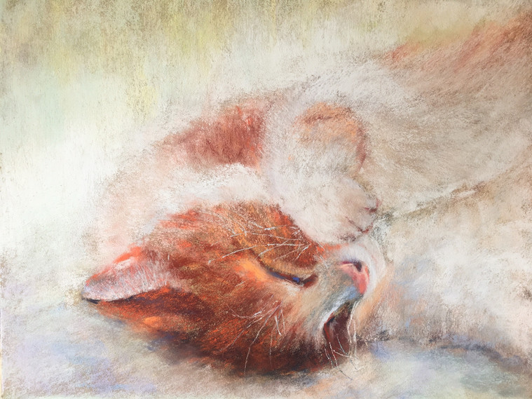 """2nd Place: """"Bliss"""" Victoria Udovikina"""