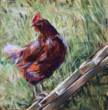 "HM #1: ""Another Day On A Farm"" Katya Zaytseva"