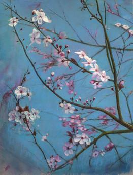 "Francesco Ipsan ""Flowering cherry"""
