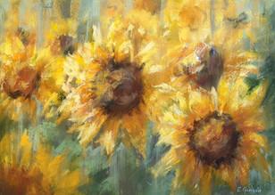 "Elena Genkin ""Sunflower Fields"""