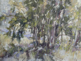 "Christine Bowman ""Today's Plein Air Trees"""