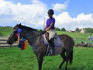 Simmons Sport Horses at Keezelnutten!