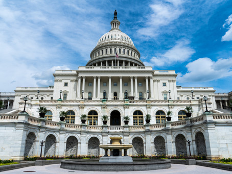 Politics and the Prophetic Voice of the Church