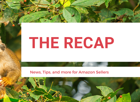 The Recap: News for Amazon Sellers | Edition 13