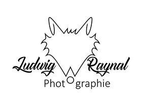 Logo Ludwig.jpg