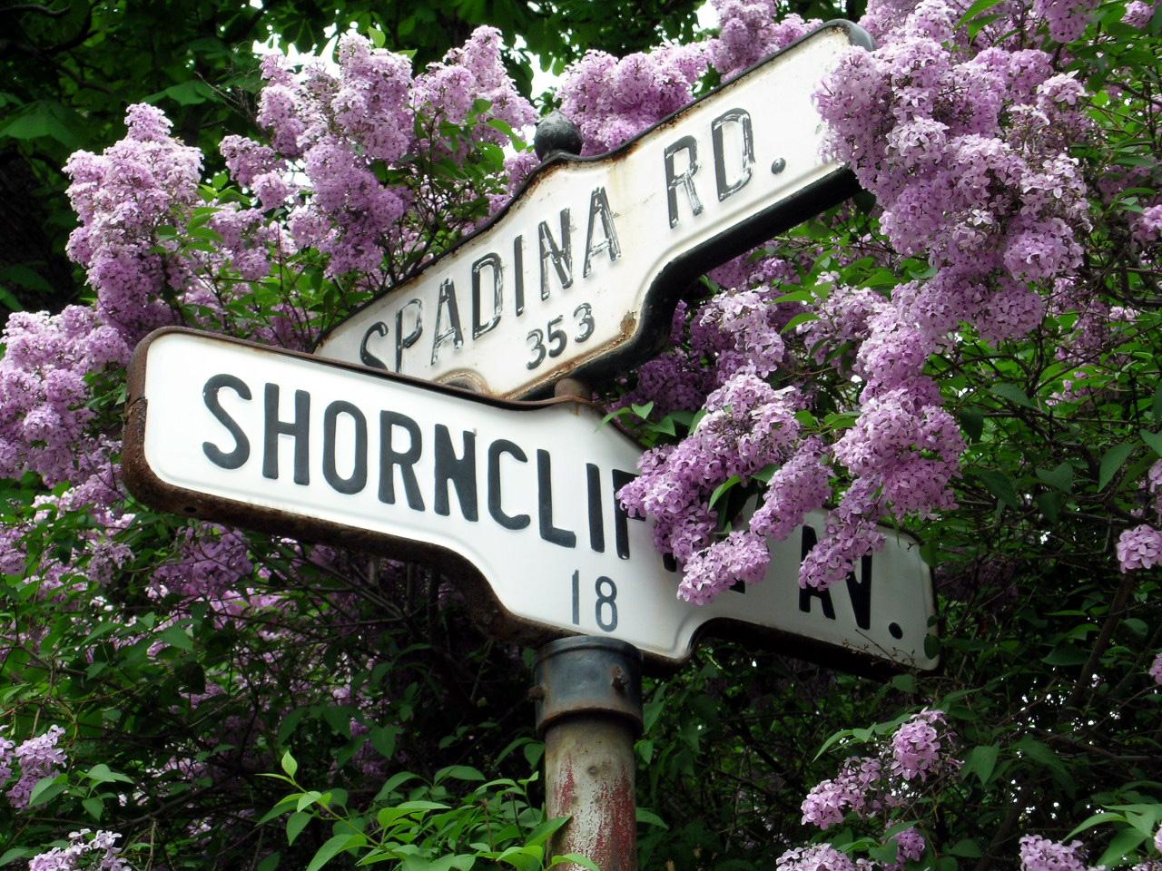 your grandma's hometown?