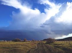 """Farm House View"" by Babetta Kelly"