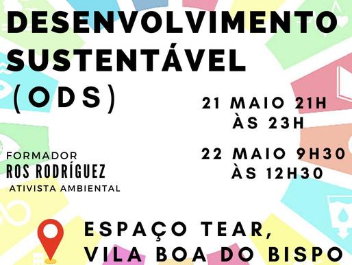 Objetivos do Desenvolvimento Sustentável são tema de workshop em Vila Boa do Bispo