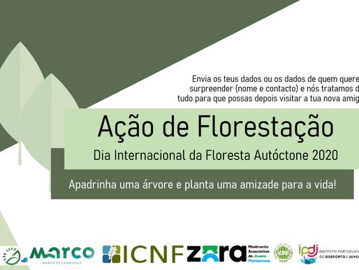 Vila Boa do Bispo assinala Dia Internacional da Floresta Autóctone