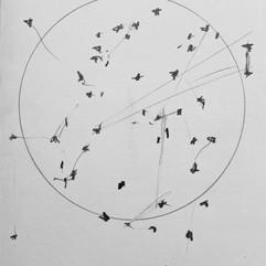 Particles V