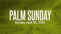 CMG-Palm_Sunday-Still_edited.jpg