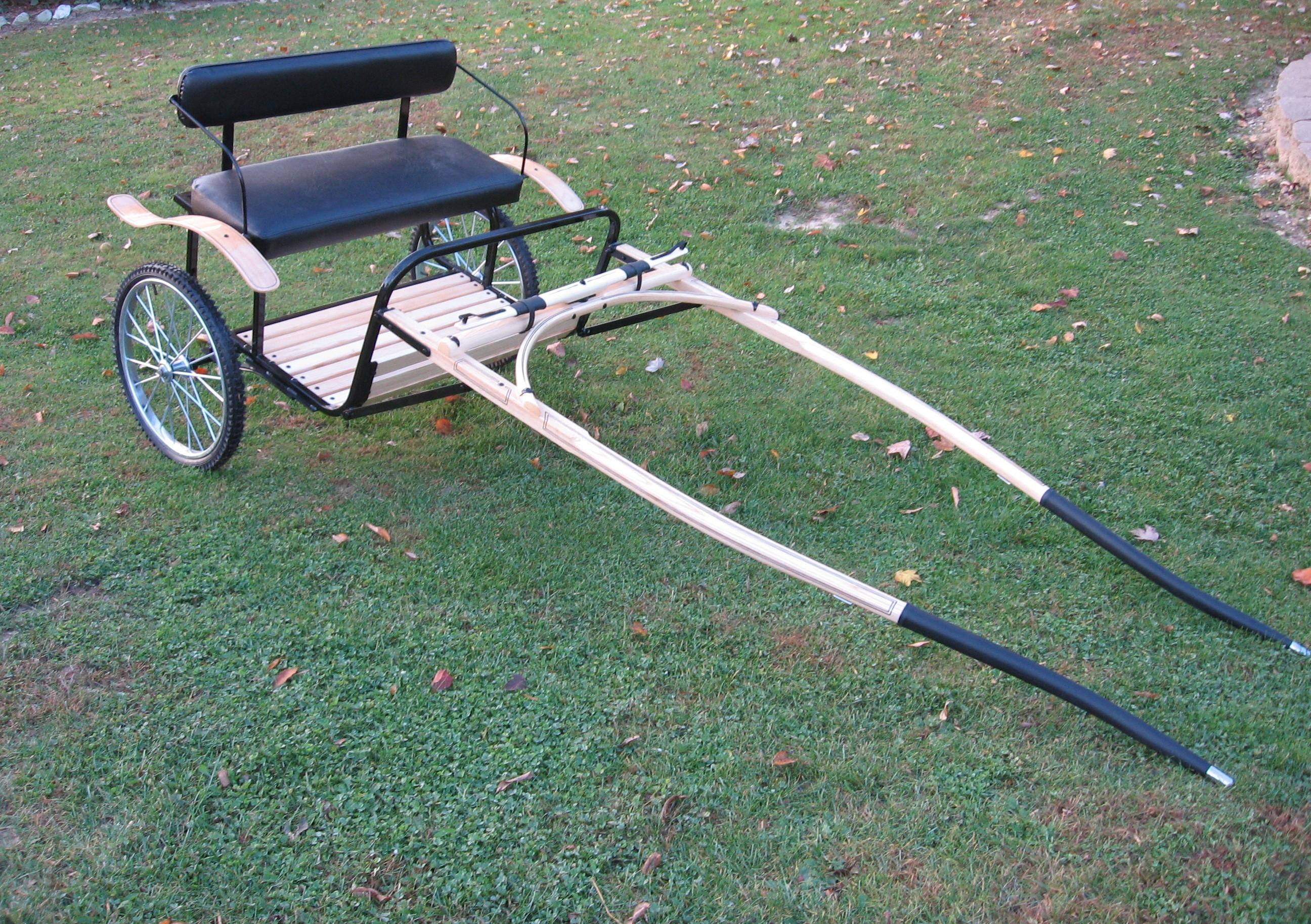 Classic Ez Entry Cart