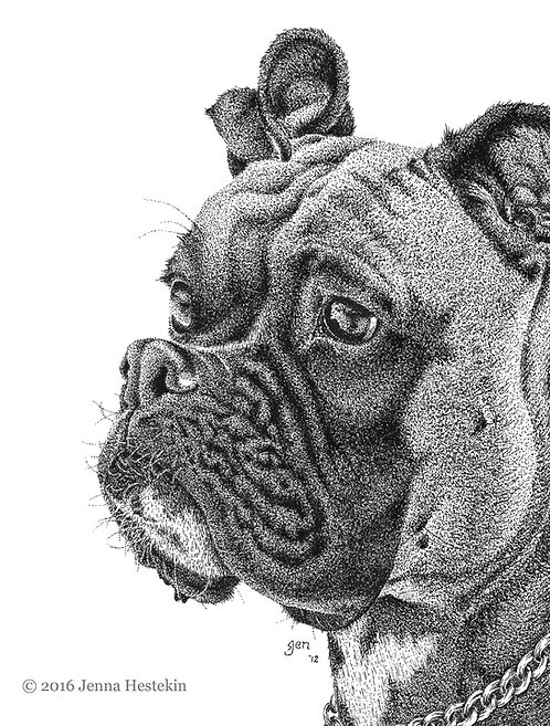 Boxer Fine Art Print or Notecards