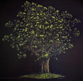 Tree ~ Commission