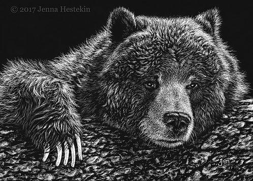 Bear Scratchboard Fine Art Print
