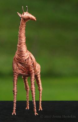 Giraffe ~ Sold